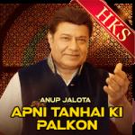 Apni Tanhai Ki Palkon (Live) - MP3