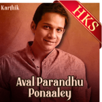 Aval Parandhu Ponaaley (Cover) - MP3