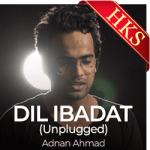 Dil Ibadat (Unplugged) - MP3