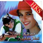 Mohabbat Ka Maza Paaya - MP3