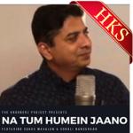 Na Tum Humein Jaano(Kroonerz Version) - MP3