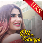 Dil Na Todunga - MP3