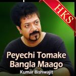 Peyechi Tomake Bangla Maago - MP3