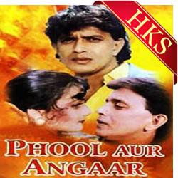 Hum Teri Mohabbat Mein - MP3