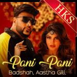 Paani Paani - MP3 + VIDEO