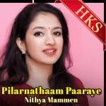 Pilarnathaam Paaraye (Cover) (Malayalam Christian) - MP3