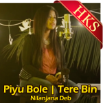 Piyu Bole   Tere Bin (Mashup) - MP3