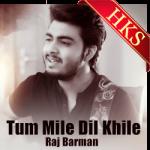Tum Mile Dil Khile (Cover) - MP3