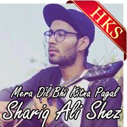 Mera Dil Bhi Kitna Pagal (Cover) - MP3