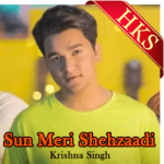 Sun Meri Shehzaadi (Saaton Janam) (Cover) - MP3 + VIDEO