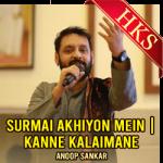 Surmai Akhiyon Mein | Kanne Kalaimane (Mashup) - MP3