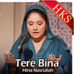Tere Bina - MP3