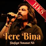 Tere Bina(Pakistani) - MP3