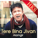 Tere Bina Jivan Apna(Pakistani) - MP3