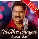Tu Meri Shayeri - MP3