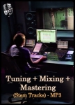 Tuning + Mixing + Mastering(Stem Tracks) - MP3