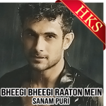 Bheegi Bheegi Raaton Mein (Sanam Version) - MP3