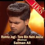 Ramta Jogi - Tere Bin Nahin Jeena (Mashup) - MP3